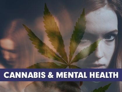 Cannabis & Mental Health